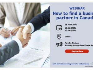 Free Webinar on How to Find a Business Partner in Canada